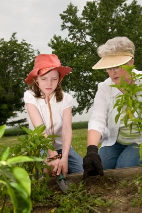 Grandma gardening